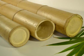 Bamboepalen naturel vanaf Ø 3 cm
