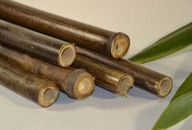 Bamboepalen zwart.