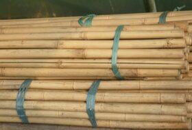 Bamboepalen naturel tot Ø 3cm