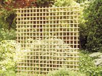 Bamboetrellis recht 180 x 180 cm.