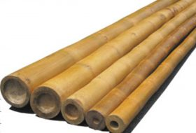 Zuid-amerikaanse bamboepalen.