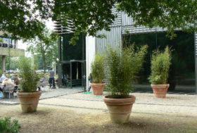 Project bamboe voor buitenruimte bedrijf.