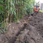 begrenzen door Randijk bamboe