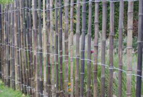 Bamboe hekwerk langs een weide.