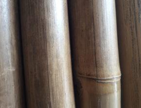 scheur in bamboe
