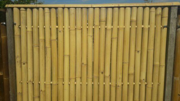 Bamboescherm Jumbo